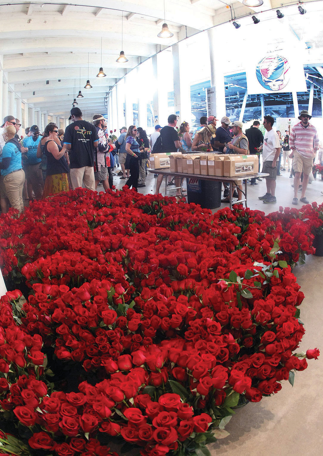 Spencer Tulis/Finger Lakes Times<br /> FTD florists handed out over 50,000 free roses at the opening concert Friday. Roses are one of the main images relating to The Grateful Dead on album covers, posters, tee-shirts, promotions and in their songs.