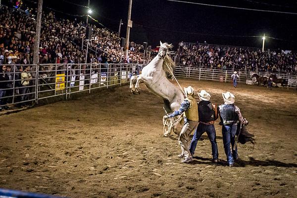 Rodeo in Inverness Quebec<br /> <br /> L'attrapé du cheval sauvage .<br /> Série faite lors d'une soirée au Rodéo d'Inverness<br /> qui gagne en popularité.<br /> Photo Olivier PontBriand