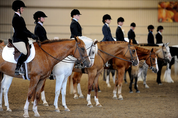 "Riders wait for results from English showmanship on Thursday at the Boulder County Fair in Longmont.<br /> For more photos and video of horses, go to  <a href=""http://www.dailycamera.com"">http://www.dailycamera.com</a>.<br /> Cliff Grassmick / July 28, 2011"