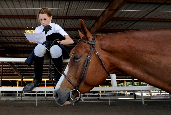 "Kelsey Dawson and her horse, Oz, look over judges notes during the  English showmanship on Thursday at the Boulder County Fair in Longmont.<br /> For more photos and video of horses, go to  <a href=""http://www.dailycamera.com"">http://www.dailycamera.com</a>.<br /> Cliff Grassmick / July 28, 2011"