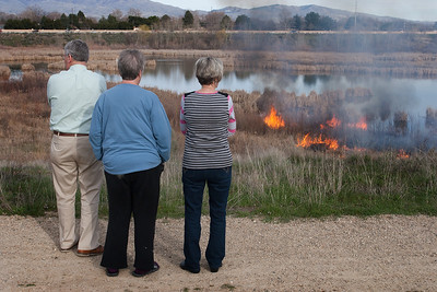 Neighbors who live next to the Hyatt Hidden Wetland park watch as a brush fire burns through the dried cat tails along the waters edge.