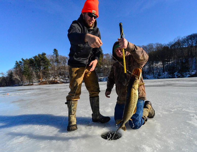 KRISTOPHER RADDER - BRATTLEBORO REFORMER<br /> Greg Edwards, of Winchester, N.H., pulls the line while Cody Koncal, of Northfield, Mass., helps brings out a 29 -inch Pike while fishing.  After taking some photos and measurements, they release the fish back into the waters.