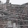 Mike McMahon - The Record, Snow clings to utility lines on 5th Ave in Troy,  January 18, 2014.