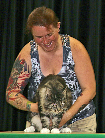 Elizabeth Pearl | The Lebanon Reporter<br /> <br /> CAT'S ME-WOW: Cat show judge Windy Johnston examines last year's champion, Romeo.