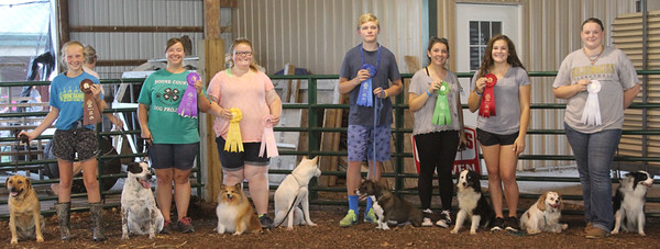 TOP DOG: The top spots in the Dog Show went to 4-Hers (from left), Emerson Haines, Olivia Williams, Shelby Woodruff, Logan Wallace, Bailey Neese, Abbie Battisti and Abbey Haywood. In order to be awarded a spot in the top dog category, showers must score well in obedience, showmanship, agility and rally.