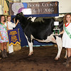Rod Rose The Lebanon Reporter<br /> DAIRY SHOW SUPREME: Anne Kissel is joined by the Boone County 4-H Fair queen's court after she captured the dairy show's Supreme Dairy Animal award with Pippa, her 3-year-old Holstein.