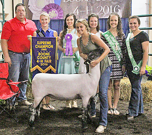 CHAMPION EWE: Seven-year 4-Her Sydney Foster was awarded the supreme champion ewe banner on Sunday.
