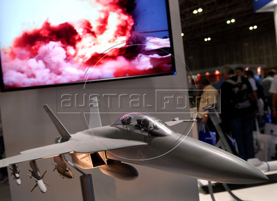 A Hornet F18 fighter jet model is seen during the Latin America Aero and Defence (LAAD) trade show for the defence and security industry in Latin America,  Rio de Janeiro, Brazil, April 14, 2011. (Austral Foto/Renzo Gostoli)