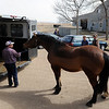 "Rubin Trinidad, left, and Jenny Baldwin, load up a horse at Autumn Hill Equestrian Center, during the evacuation because of the Lefthand Canyon Fire on Friday.<br /> For a videos of the fire, go to  <a href=""http://www.dailycamera.com"">http://www.dailycamera.com</a>.<br /> Cliff Grassmick/ March 11, 2011"