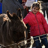 KRISTOPHER RADDER - BRATTLEBORO REFORMER<br /> Lily Bishop, 4, pets a donkey during the annual living nativity scene at the  Lutheran Trinity Church on Sunday, Dec. 17, 2017.