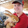Globe/T. Rob Brown<br /> Kendall Ferris, 15, of Carl Junction, holds Forrest, his grand champion and blue ribbon winning Flemish giant rabbit Wednesday morning, July 10, 2013, during the Jasper County Youth Fair.