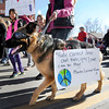 "Natalie Littlefield, of Boulder, walks ""Charlie"" the dog during the Martin Luther King Jr. March for Peace on Monday, Jan. 21, in Lafayette. For more photos and video of the event go to  <a href=""http://www.dailycamera.com"">http://www.dailycamera.com</a><br /> Jeremy Papasso/ Camera"