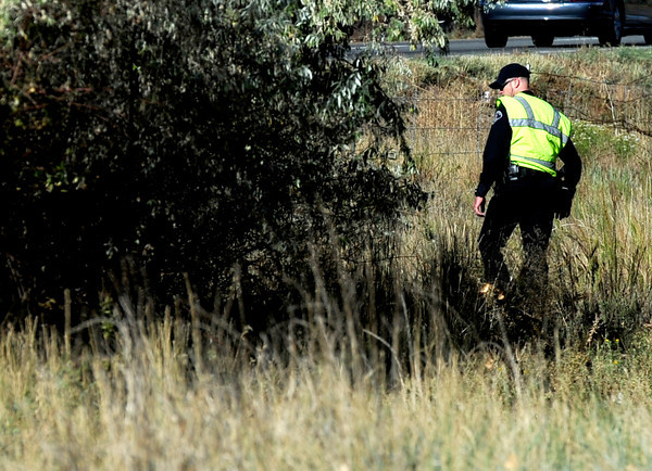 A searcher checks the bushes for while looking for sign of Jessica Ridgeway in Superior, Colorado October 8, 2012. BOULDER DAILY CAMERA/ Mark Leffingwell