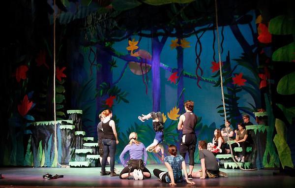 Making Berkshire Theater Group's Tarzan-071918