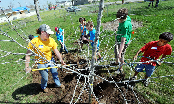 Globe/T. Rob Brown<br /> Abby Kircher, left, a sophomore forestry major with MU's School of Natural Resources, helps a group of children from Carl Junction plant a tree in the yard of a Duquesne resident Saturday morning, March 31, 2012. About 225 red maple trees were donated by the Joplin Lions Club and were planted by volunteers from many regional Lions Club branches, including the Carl Junction LEO (Leadership, Excellence & Opportunity) community service organization. Pictured from left after Kircher: Tyler White, 10, Lauren Winters, 15, Jaron Bastings, 12, Lake Shelton, 14, and Calbe Poorman, 10, all of Carl Junction.