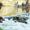 Globe/T. Rob Brown<br /> Scott Fuller, of Carl Junction, tries using salmon eggs near the baffles by a bridge Thursday morning, March 1, 2012, at Roaring River State Park in Cassville, Mo.
