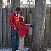 Brett Conaway and his son Henry check the sap buckets at Zion Nature Center. The center conducted a program on backyard tree tapping and maple sugaring Saturday, Feb. 23. Visitors to the center will be able to see the sap buckets for a few more weeks.