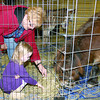 Olivia Koenig, 3, of Zionsville, and her grandmother, Beverly Irwin, of Franklin, pet Eeyore, a 14-year-old miniature horse, at NatureFest Saturday, March 1. Eeyore was among several animals on display at the annual event, held this year in Zionsville Town Hall.