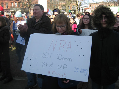 BOB SANDRICK / GAZETTE Demonstrators favoring stricter gun regulations rally Saturday morning on Public Square in Medina.