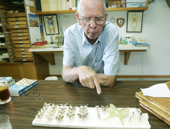 Globe/Roger Nomer<br /> Raye Letsinger talks about some of his recent insect captures during an interview on Monday.