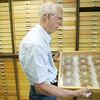 Globe/Roger Nomer<br /> Raye Letsinger talks about a selection of Hyalophora cecropias in his collection during an interview on Monday.
