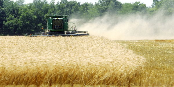 Globe/Roger Nomer<br /> Ron Westervelt harvests his wheat crop near Columbus, Kan., on Wednesday afternoon.