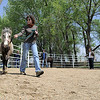 Veteran Chrystal Martin leads Fearless around the ring at Medicine Horse Program in Boulder, Colorado May 16, 2011.  Medicine Horse Program partnered with the Veterans Peace of Mind Project to create Fearless Victory, a program that mixes Veterans suffering from Post Traumatic Stress Disorder (PTSD) with wild horses in a mindful meditation program. CAMERA/Mark Leffingwell