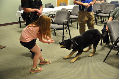 ASHLEY FOX / GAZETTE Kendall Kohler, 10, plays Tug-O-War with 17 month-old Apollo. Kendall's father, Deputy Dan Kohler, has had Apollo for three weeks. Apollo, a reserved pup, likes to eat Kendall's stuffed animals but also keeps a watchful eye over Kendall.