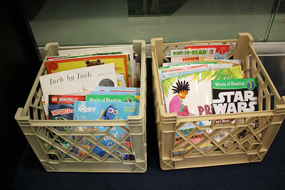 LAWRENCE PANTAGES / GAZETTE After completing 30 days of reading at least 20 minutes per day, visitors participating in the Medina County District Library's Summer Reading Game may choose a free book from one of these bins.