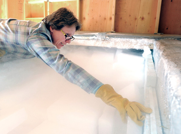 "Jane Curtis Gazit, of Keep Magnolia Clean, LLC, arranges blocks of dry ice in the freezer that holds the casket of Grandpa ""Bredo Morstoel"" on Monday, Oct. 22, in Nederland. For a video on how Grandpa Bredo Morstoel is kept frozen go to  <a href=""http://www.dailycamera.com"">http://www.dailycamera.com</a><br /> Jeremy Papasso/ Camera"