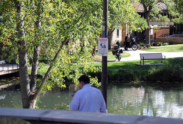"A mountain lion was tranquilized in a tree next to this pond at the Kittredge dorms on the University of Colorado campus Wednesday afternoon.<br /> For a video and more photos of the mountain lion, go to  <a href=""http://www.dailycamera.com"">http://www.dailycamera.com</a>.<br /> Cliff Grassmick / October 5, 2011"