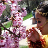 "Kareen Basnet, 9, dressed in traditional Nepalese, stops to smell the Spring blossoms before the parade.<br /> The Nepal New Year of B.S. 2067 was celebrated in Boulder on Sunday with a parade around downtown by area residents.<br /> For more photos, go to  <a href=""http://www.dailycamera.com"">http://www.dailycamera.com</a>.<br /> Cliff Grassmick / April 18, 2010"
