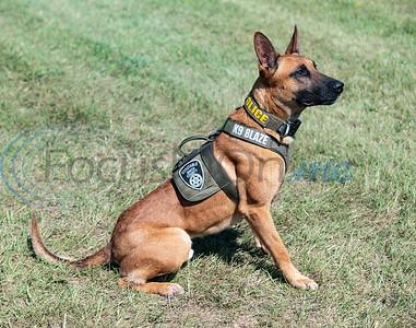 Blaze will become a K-9 officer with Smith County Constable Pct. 5 deputy Alvin Gordon.