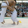 Children Sumo Championship