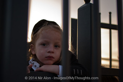 Three year old boys are given their first haircut - Halaka - at the gravesite of Rabbi Shimon Bar Yochai. Meron, Israel. 22/05/2011.