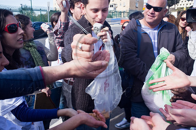 Youth Protection Services worker distributes breadcrumbs to colleagues symbolizing the unfair wages service employees earn at a demonstration outside the Ministry of Social Affairs. Jerusalem, Israel. 10th January 2012.