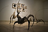 """An exhibit named Terra Incognita by artist Tomer Sapir is displayed in the Chelouche Gallery for Contemporary Art on 'Art Weekend', launching Tel Aviv's 'Art Year' with major art projects artistically flourishing the city. Tel-Aviv, Israel. 22-Mar-2012.<br /> <br /> Tel-Aviv – Yafo Municipality press release, February 2012:<br />  <br /> Art Weekend launches Tel Aviv's Art Year with major art<br /> projects transforming the urban landscape of the non-stop city<br /> Tel Aviv Art Weekend 21st to 25th March 2012<br /> <br /> 2012 is a pinnacle in Tel Aviv's cultural life, with the completion of 3 major construction and renovation projects of the city's cultural institutions: The Tel Aviv Cinematheque, Habima National Theatre and the Tel Aviv Museum of Art, which doubled its exhibition space with a new building by American architect Preston Scott Cohen. To mark this milestone, Mayor Ron Huldai declared 2012 as Art Year.<br /> <br /> Tel Aviv Art Weekend will be the launching event of Art Year, and will encapsulate the creative spirit of Tel Aviv by engaging its art museums and 100 of the city's independent galleries and alternative spaces with main cultural centers. The city will radiate creativity as Tel Aviv's famous restaurants, cafes and bars will also engage with this general atmosphere of art. Mayor Ron Huldai says: """"Since its founding, the city of Tel Aviv-Yafo has been identified by its art and culture, with the Tel Aviv Museum of Art functioning as the beating heart of the city's art community; the museum's first exhibition space was the living room of the city's first Mayor, who believed that the city should not only create infrastructure but also lay down the foundation for creation"""".<br /> <br /> Key events over the weekend of March 21 - 25, 2012 will include:<br /> <br /> - Non-Stop Museum, March 22 - March 23<br /> A 24-hour marathon at the Tel Aviv Museum of Art starting Thursday 4pm, will<br /> include talks, panel discussions, art tours, dance, video-a"""