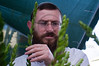A religious man meticulously inspects the haddas, boughs with leaves from the myrtle tree and one of the 'Four Species', before purchasing at a Four Species Market in the neighborhood of Bait-Vagan. Jerusalem, Israel. 27-September-2012.<br /> <br /> With Yom Kippur over, preparations immediately begin for Sukkot, the Feast of Tabernacles. Religious Jews inspect and purchase the 'Four Species', as ordered in Leviticus 23:40. Any slight imperfection invalidates the fruit.