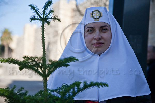 A nun holds a Christmas tree just received at a distribution site at the Jaffa Gate. Jerusalem, Israel. 23-Dec-2012.<br /> <br /> The Keren Kayemeth LeIsrael - Jewish National Fund, and the Jerusalem Municipality, assisted by Issa dressed as Santa Claus, distribute specially grown Arizona Cypress trees as Christmas trees to the Christian population at the Jaffa Gate.