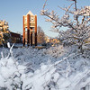 Snow blankets the ground near the Lindeken Clock Tower on Oct. 25. (Photo by Justin Haag)