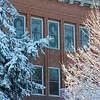 Snowy trees frame windows decorated for homecoming Oct. 25. (Photo by Justin Haag)