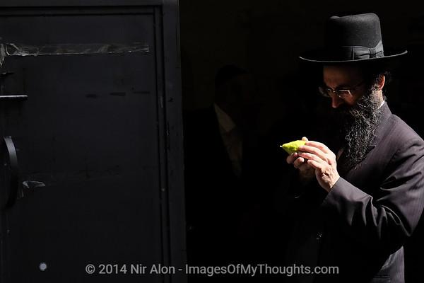Sukkoth Preparations in Israel