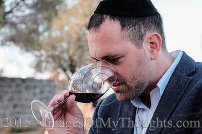2015 Wine Festival in Jerusalem, Israel