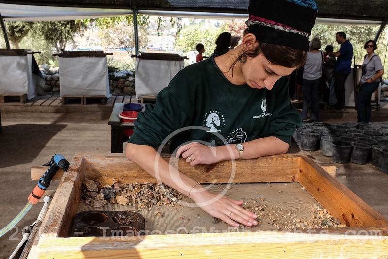 Temple Mount Sifting Project in Jerusalem