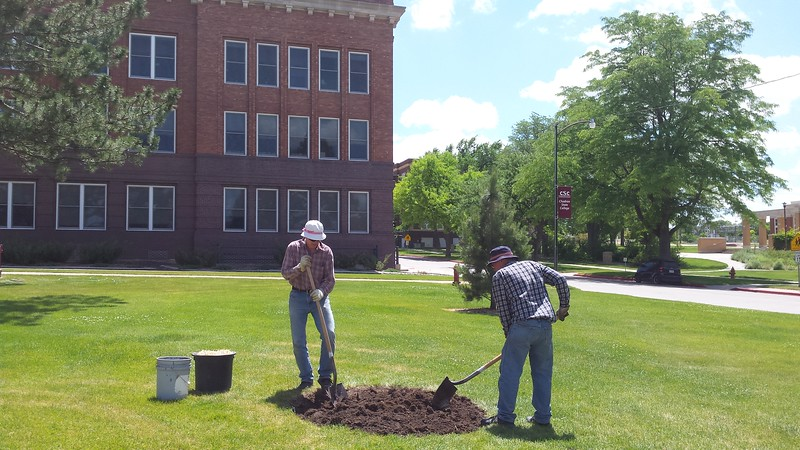 Charlie Wood, right, and Craig Price dig a hole for a bur oak tree in front of Old Admin. The bur oak tree was donated in memory of Troy Green, a CSC alumnus. (Photo by Lucinda Mays/CSC)