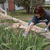 Lori Entzminger, assistant professor of education at Chadron State College, weeds flower beds at the Dawes County Historical Society Museum April 23, 2016, during the fourth annual The Big Event. (Tena L. Cook/Chadron State College)