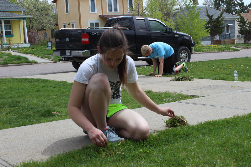 Chadron State College students Courtney Lion of Grant, Neb., and Lane Swedburg of North Platte, Neb., help weed the front lawn of the Chadron Public Library, as part of The Big Event on April 23, 2016. (Photo by Conor Casey/CSC)