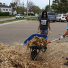 Dr. Jamie Wada, Chadron State  College associate professor and department chair of justice studies, helps spread mulch with Shelby Dunker of Akron, Colo., April 23, 2016, as part of The Big Event. (Photo by Conor Casey/CSC)