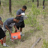 Chadron State College football team members, from left, Tacory Spencer and Trevon Mosley of Fontana, California, and Brian Wood of Stockton, California, plant pine trees in Chadron State Park Saturday during the fourth annual The Big Event April 23, 2016. (Tena L. Cook/Chadron State College)