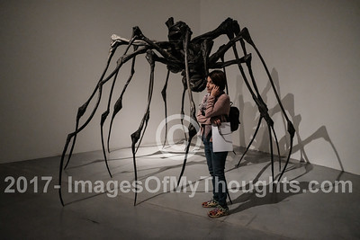 A woman studies the art work of Louise Bourgeois on display in the Tel Aviv Museum of Art.
